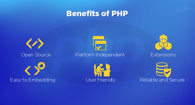 PHP Web Development Services in India