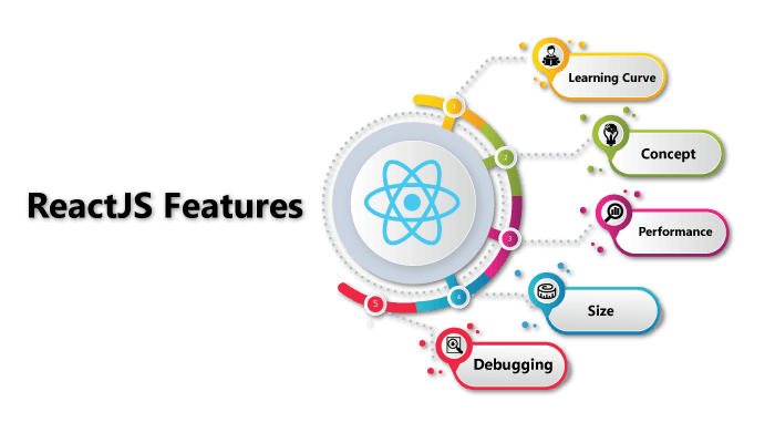 ReactJS Web Development Services India