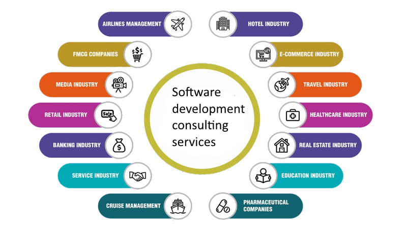 Software Consulting Services in India